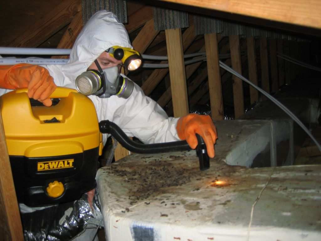 Rockford Pest Control Pros